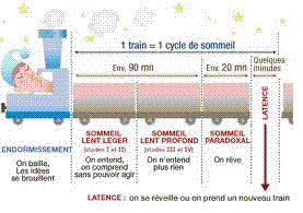 sommeil-train.png